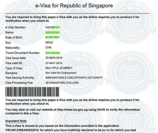 加坡电子签证页样图